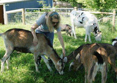 Farm therapy merges nature and nurture